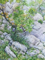 "The painting ""Spring in the mountains of Montenegro"""