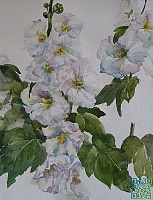 "Painting ""White mallow"""