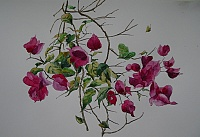 "The painting ""Bougainvillea"""