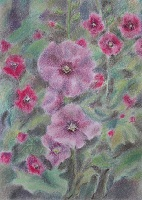"The painting ""Pink Mallow"""