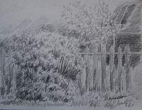 "Sketch  ""Shrub and hedge"""